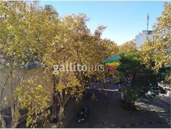 https://www.gallito.com.uy/muy-buena-ubicacion-al-frente-comodo-balcon-acepta-banco-inmuebles-19932674