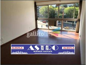 https://www.gallito.com.uy/apartamento-monoambiente-pocitos-inmuebles-19950789