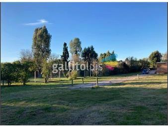 https://www.gallito.com.uy/terreno-y-casa-con-proyecto-aprobado-de-7-unidades-de-ph-inmuebles-19964535