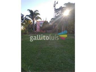 https://www.gallito.com.uy/alquilo-chacra-muy-lindo-lugar-inmuebles-19971862