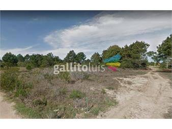 https://www.gallito.com.uy/venta-de-terreno-en-balneario-puimayen-rocha-inmuebles-19979944