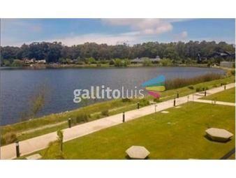https://www.gallito.com.uy/apartamento-moderno-y-amplio-sobre-avenida-inmuebles-20010892