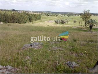 https://www.gallito.com.uy/venta-de-campo-inmuebles-20047683
