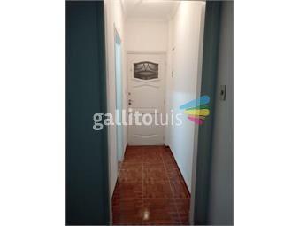 https://www.gallito.com.uy/adi-alquila-1-dormitorio-centro-inmuebles-20117300