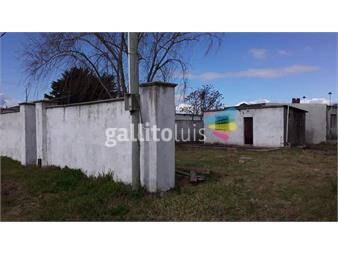 https://www.gallito.com.uy/terreno-treinta-y-tres-inmuebles-16897920