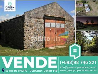 https://www.gallito.com.uy/se-vende-importante-y-productivo-campo-durazno-inmuebles-20212435