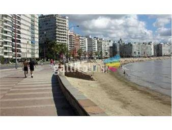 https://www.gallito.com.uy/alquiler-apto-1-dormitorio-al-frente-rambla-inmuebles-20232223