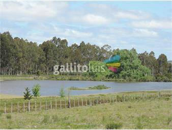 https://www.gallito.com.uy/campo-de-51-has-para-agricultura-ganaderia-haras-etc-inmuebles-15232966