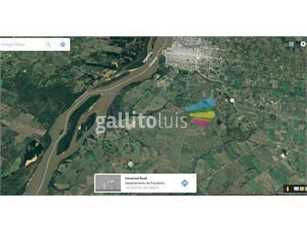 https://www.gallito.com.uy/paysandu-chacra-33-has-inmuebles-20285497