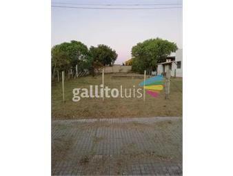 https://www.gallito.com.uy/venta-terreno-paso-de-los-toros-tacuarembo-inmuebles-20326953