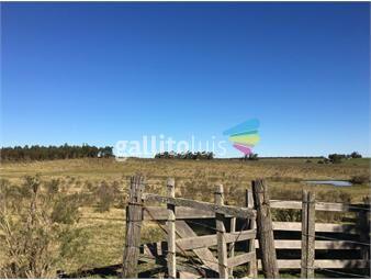 https://www.gallito.com.uy/vendo-campo-en-florida-inmuebles-20471889