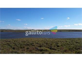 https://www.gallito.com.uy/estancia-de-600-has-mixtas-costa-rio-negro-inmuebles-20524541