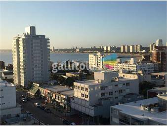 https://www.gallito.com.uy/departamento-peninsula-inmuebles-16900841