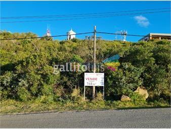 https://www.gallito.com.uy/vende-3-terrenos-en-el-cerro-san-antonio-vistas-unicas-inmuebles-20618481