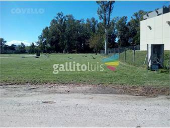 https://www.gallito.com.uy/terreno-colonia-del-sacramento-inmuebles-16943604