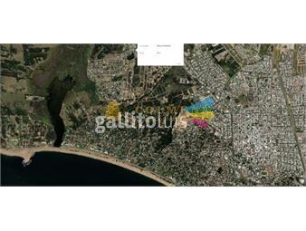 https://www.gallito.com.uy/terreno-en-barrio-la-fortuna-de-411-m2-consulte-inmuebles-16991848