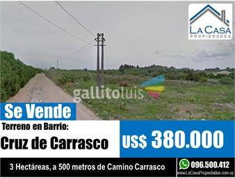https://www.gallito.com.uy/terreno-camino-carrasco-inmuebles-16943203