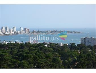 https://www.gallito.com.uy/apartamento-con-vista-increãble-hacia-punta-del-este-y-sus-inmuebles-17140911