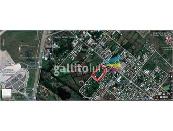 https://www.gallito.com.uy/proximo-al-aeropuerto-internacional-de-carrasco-y-a-metros-inmuebles-16870521