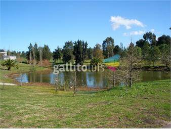 https://www.gallito.com.uy/venta-terreno-en-san-nicolas-primera-etapa-inmuebles-16348064