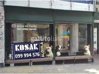 https://www.gallito.com.uy/amplio-local-comercial-con-deposito-zona-centro-inmuebles-16753957