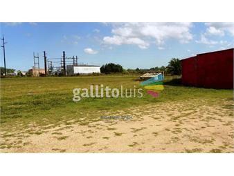 https://www.gallito.com.uy/venta-terreno-zona-suarez-sobre-ruta-74-y-ruta-8-inmuebles-17363476