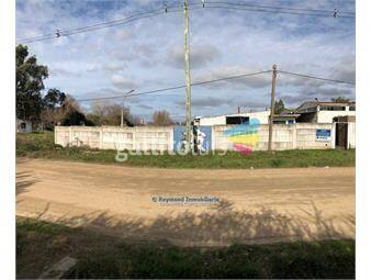https://www.gallito.com.uy/local-industrial-1000m2-en-terreno-de-7404m2-inmuebles-15313215