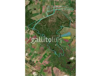 https://www.gallito.com.uy/venta-campo-san-jose-uruguay-inmuebles-16900936