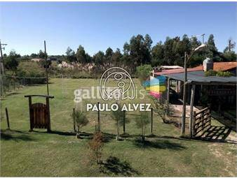 https://www.gallito.com.uy/terrenos-venta-playa-grande-te1004-inmuebles-17567734
