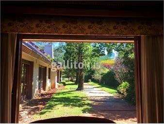 https://www.gallito.com.uy/irazabal-propiedades-alquiler-en-carrasco-sur-inmuebles-17571112