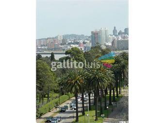 https://www.gallito.com.uy/apartamento-de-dos-dormitorios-estrena-preciosas-vistas-inmuebles-15528202