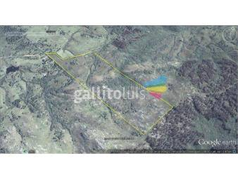 https://www.gallito.com.uy/chacra-en-la-sierra-de-rocha-inmuebles-16998089