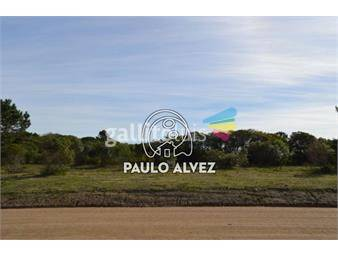 https://www.gallito.com.uy/terrenos-venta-punta-colorada-te278-inmuebles-17677507