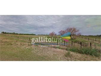 https://www.gallito.com.uy/venta-terreno-en-barros-blancos-inmuebles-17682040