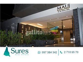 https://www.gallito.com.uy/maui-inmuebles-12941764