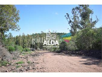 https://www.gallito.com.uy/terreno-en-punta-colorada-inmuebles-17690792