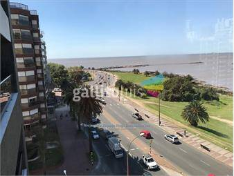https://www.gallito.com.uy/apto-frente-al-mar-1-por-piso-gge-doble-parrillero-vista-inmuebles-17709908