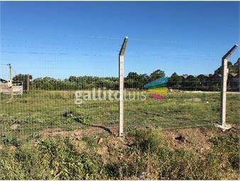 https://www.gallito.com.uy/terreno-carrasco-norte-alquiler-muy-buen-terreno-prox-feli-inmuebles-13777308