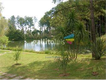 https://www.gallito.com.uy/irazabal-propiedades-haras-del-lago-inmuebles-16058314