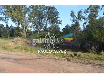 https://www.gallito.com.uy/terrenos-venta-punta-colorada-te865-inmuebles-17759483