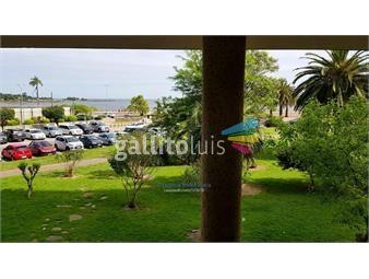 https://www.gallito.com.uy/apartamento-de-nivel-frente-embada-eeuu-inmuebles-16529233