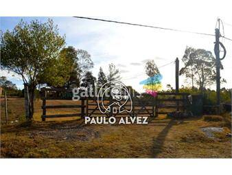 https://www.gallito.com.uy/casas-venta-pan-de-azucar-1072-inmuebles-17805712