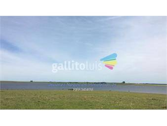 https://www.gallito.com.uy/excelente-campo-con-costa-al-rio-negro-inmuebles-17816238