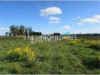 https://www.gallito.com.uy/chacra-ruta-7-km-74-tala-inmuebles-17815631