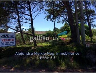 https://www.gallito.com.uy/terreno-venta-sobre-costanera-el-pinar-inmuebles-17825226