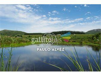 https://www.gallito.com.uy/chacras-venta-cerros-azules-ch075-inmuebles-17842176