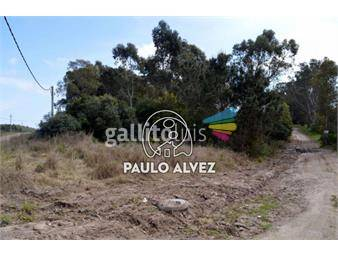 https://www.gallito.com.uy/terrenos-venta-punta-colorada-te984-inmuebles-17842660