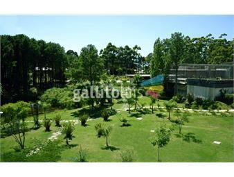 https://www.gallito.com.uy/apartamento-venta-4-dormitorios-haras-del-lago-tza-cparr-inmuebles-17873579