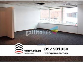 https://www.gallito.com.uy/oficina-alquiler-world-trade-center-wtc-pocitos-nuevo-inmuebles-15655690