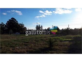 https://www.gallito.com.uy/terreno-melilla-alquiler-2000m-ruta-5-km-19-inmuebles-17907153